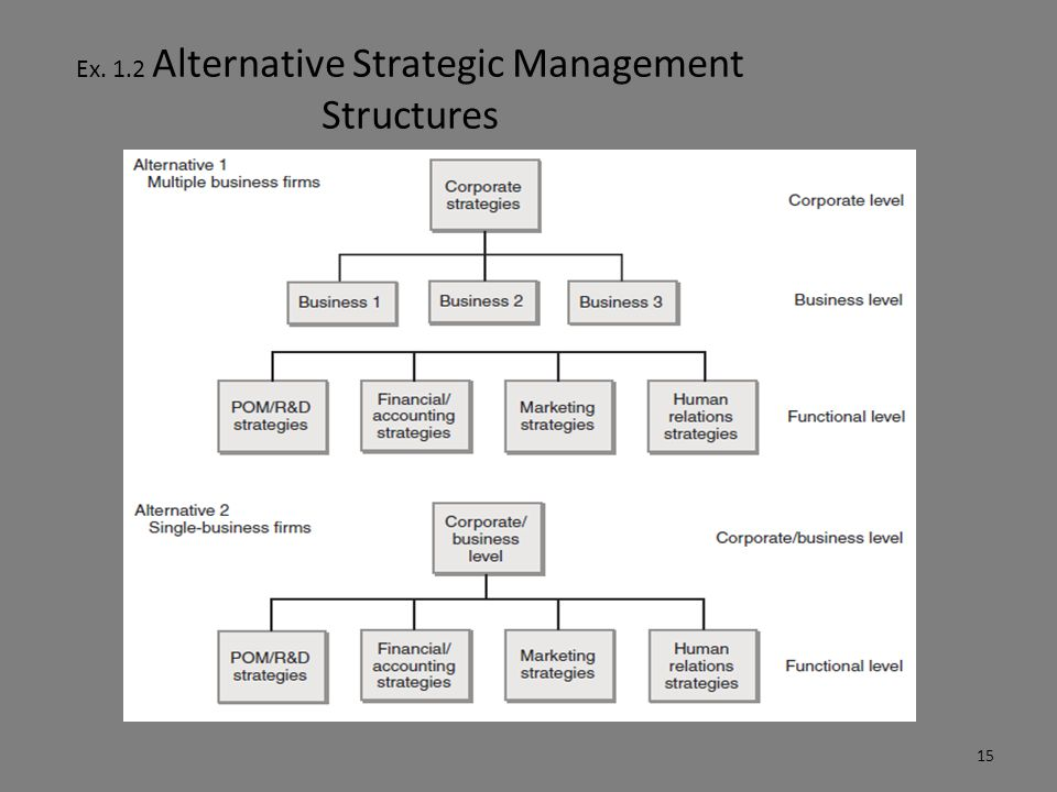Ex. 1.4 Hierarchy of Objectives and Strategy 16
