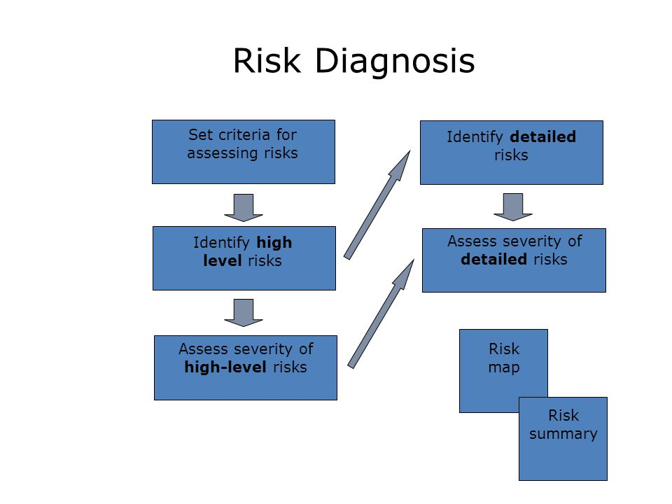 Risk Diagnosis Assess severity of high-level risks Identify high level risks Set criteria for assessing risks Identify detailed risks Assess severity of detailed risks Risk map Risk summary