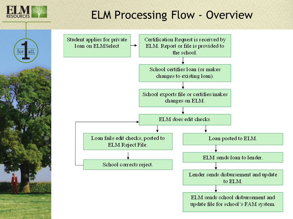 ELM Processing Flow - Overview