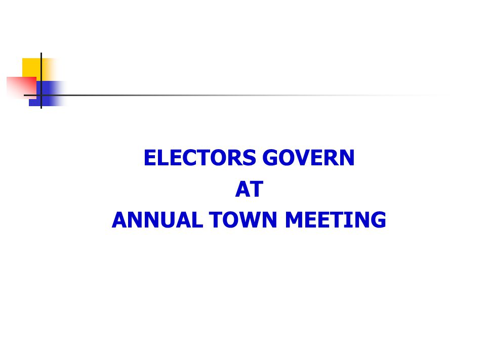 ELECTORS GOVERN AT ANNUAL TOWN MEETING