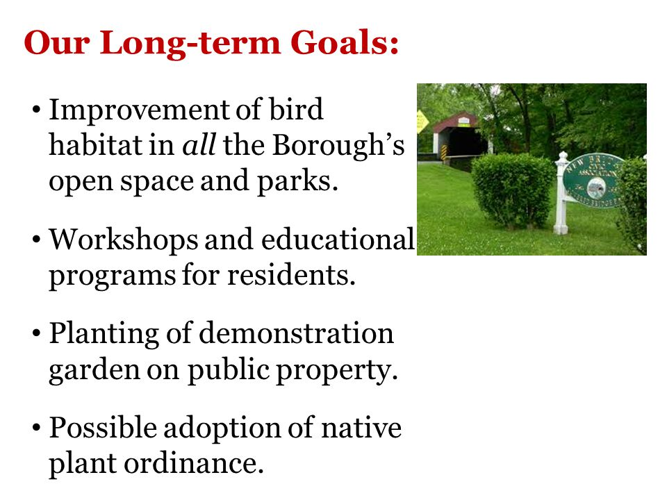 Our Long-term Goals: Improvement of bird habitat in all the Borough's open space and parks.