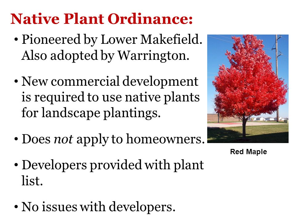 Native Plant Ordinance: Pioneered by Lower Makefield.