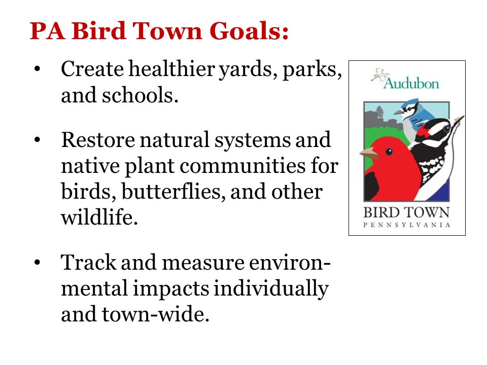 Audubon at Home Bird Habitat Recognition Program Property owners (Homes, schools, businesses, parks, or public land) who create bird habitat are encouraged to register their properties with the PA Audubon Society ($20 annual fee).