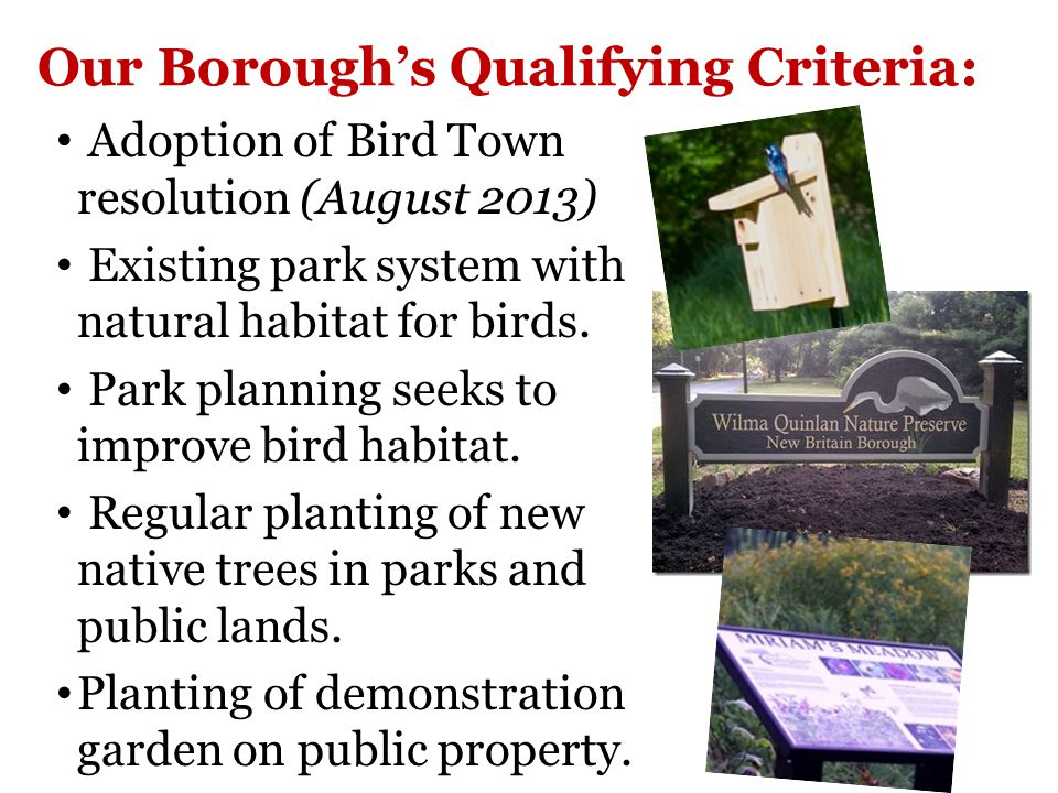 Community Effort & Coordination Borough Council Bird Town Committee Nature Preserve Civic Association Parks & Recreation Orchard Park Planning Commission Businesses Scouts and schools Borough Residents