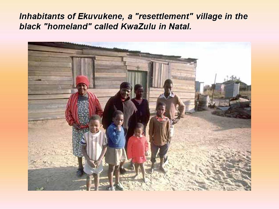 Inhabitants of Ekuvukene, a resettlement village in the black homeland called KwaZulu in Natal.