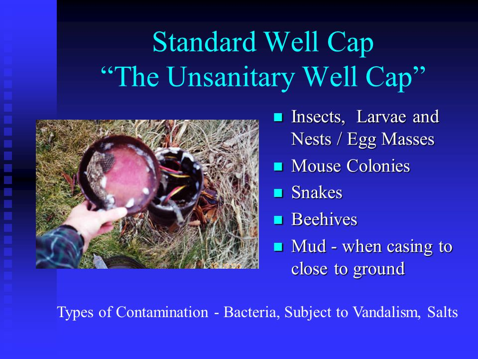 Standard Well Cap The Unsanitary Well Cap Insects, Larvae and Nests / Egg Masses Mouse Colonies Snakes Beehives Mud - when casing to close to ground Types of Contamination - Bacteria, Subject to Vandalism, Salts