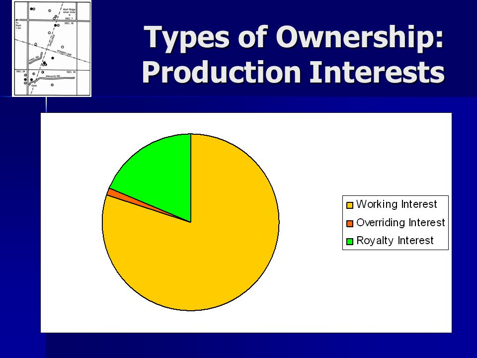 Types of Ownership: Production Interests