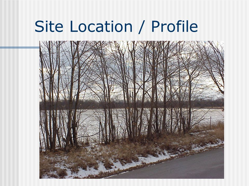 Site Location / Profile