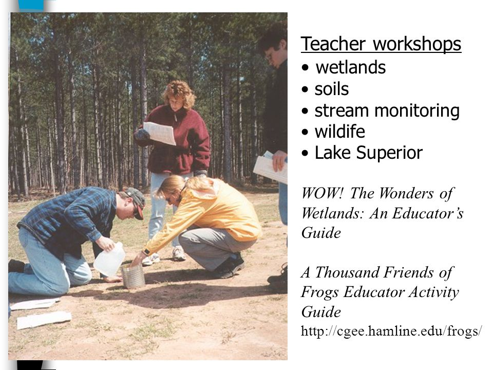 Teacher workshops wetlands soils stream monitoring wildife Lake Superior WOW.