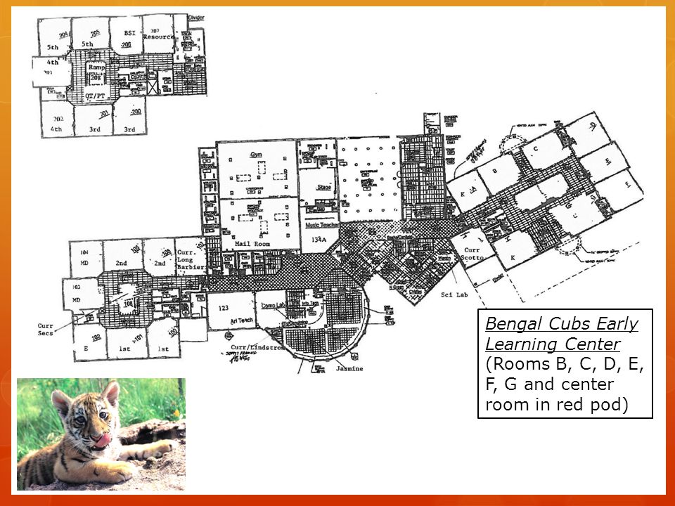 Bengal Cubs Early Learning Center Inclusions…  Open five days per week  Minimum attendance – 2 days per week  Open September through June  *** now considering being open July/August  Modeled after the Toms River Early Learning Center
