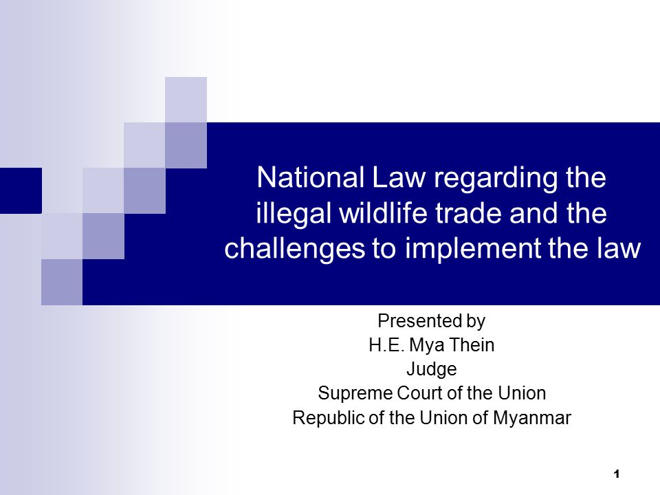 1 National Law regarding the illegal wildlife trade and the challenges to implement the law Presented by H.E.