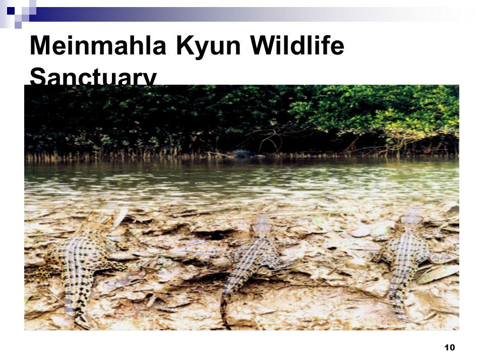 10 Meinmahla Kyun Wildlife Sanctuary