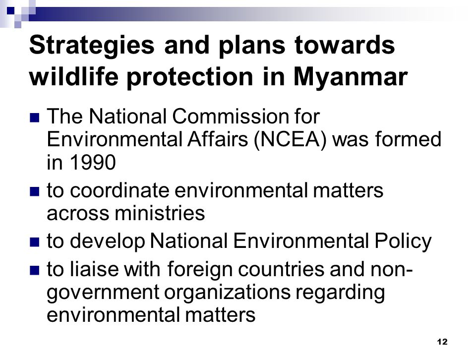 12 Strategies and plans towards wildlife protection in Myanmar The National Commission for Environmental Affairs (NCEA) was formed in 1990 to coordinate environmental matters across ministries to develop National Environmental Policy to liaise with foreign countries and non- government organizations regarding environmental matters