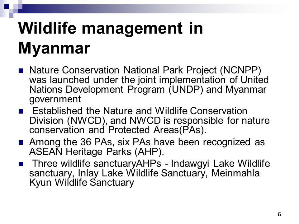 6 Indawgyi Lake Wildlife sanctuary