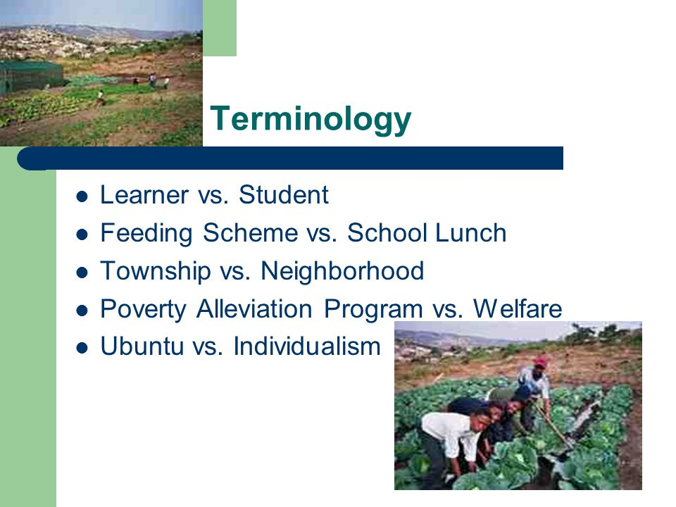 Terminology Learner vs. Student Feeding Scheme vs. School Lunch Township vs. Neighborhood Poverty Alleviation Program vs. Welfare Ubuntu vs. Individua