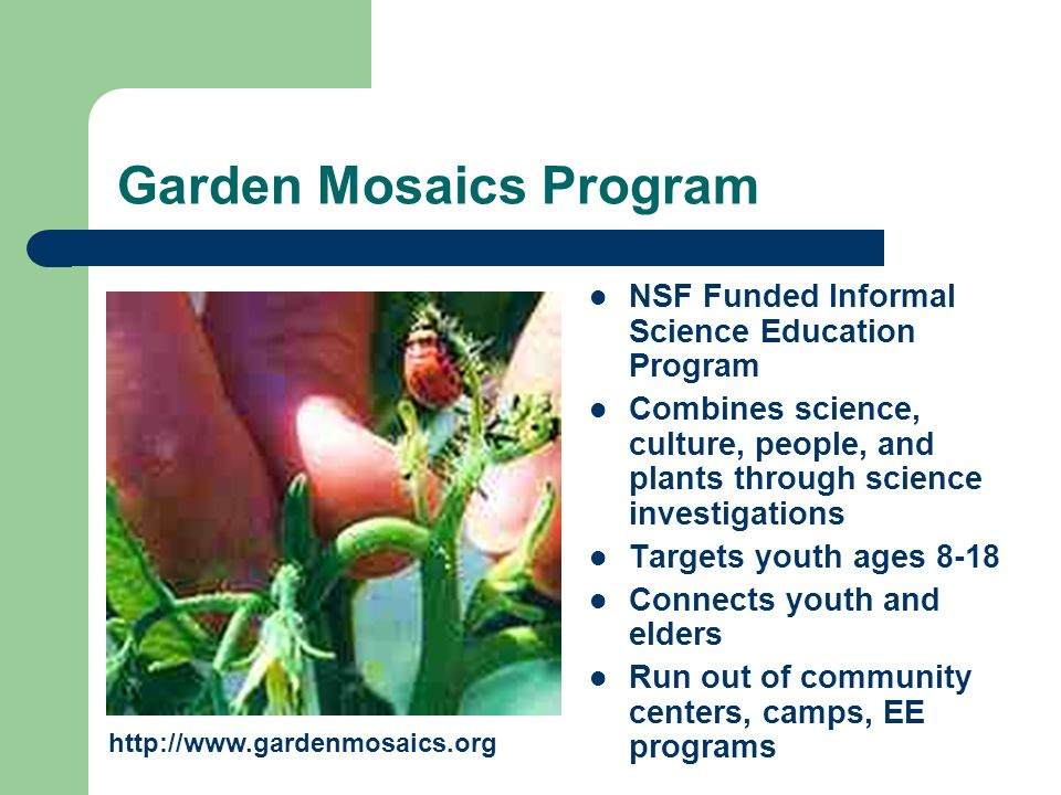Garden Mosaics Program NSF Funded Informal Science Education Program Combines science, culture, people, and plants through science investigations Targets youth ages 8-18 Connects youth and elders Run out of community centers, camps, EE programs http://www.gardenmosaics.org