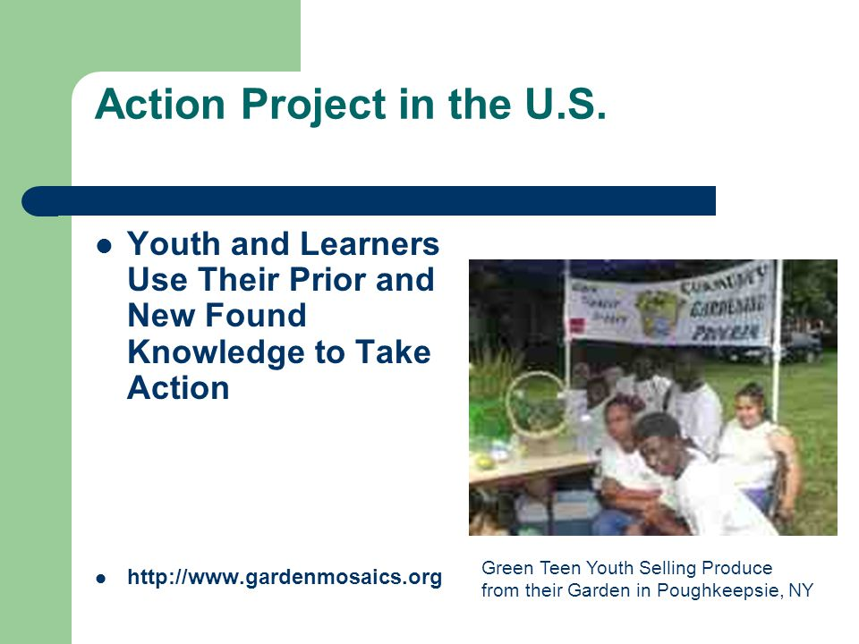 Action Project in the U.S.