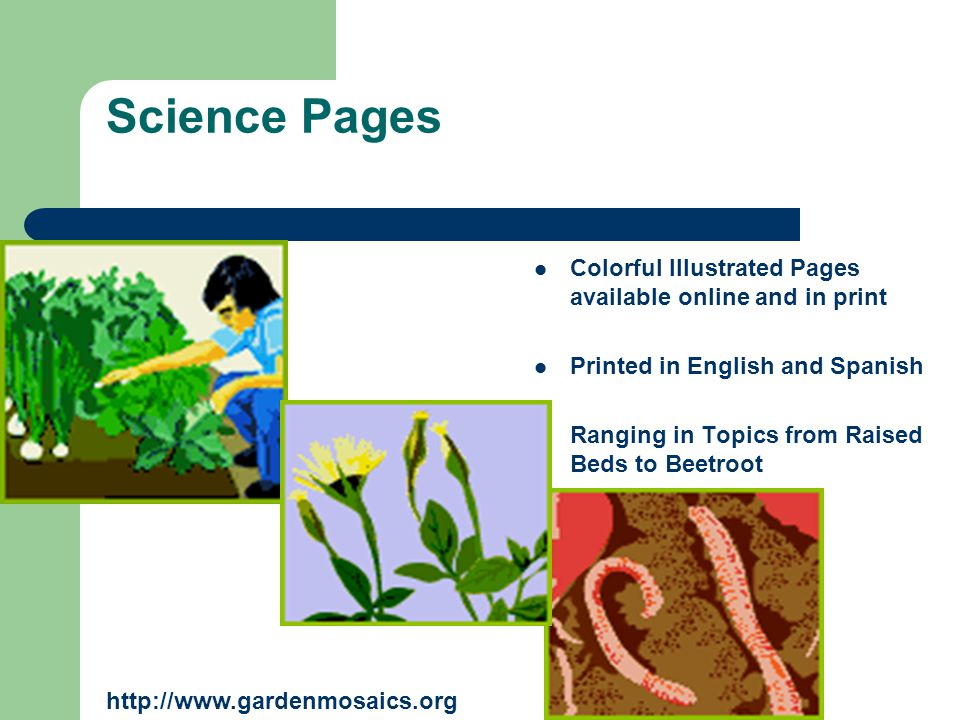 Science Pages Colorful Illustrated Pages available online and in print Printed in English and Spanish Ranging in Topics from Raised Beds to Beetroot h