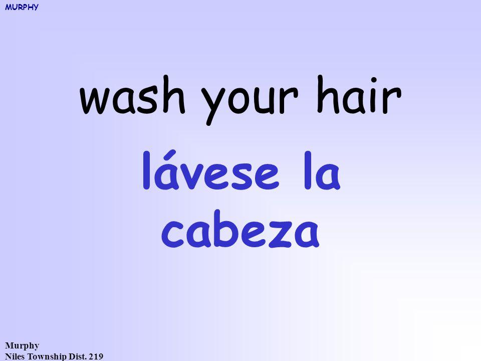 Murphy Niles Township Dist. 219 wash your hair lávese la cabeza MURPHY