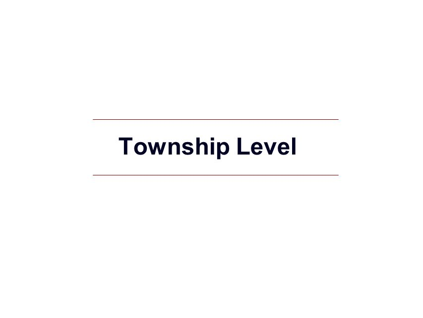 Township Level