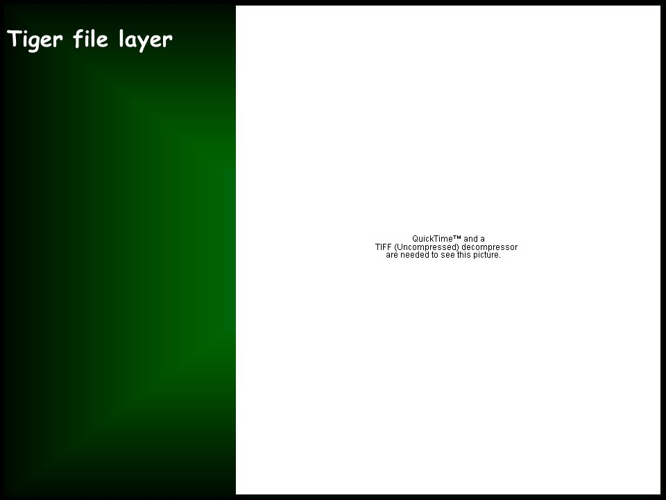 Tiger file layer