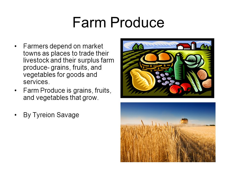 Farm Produce Farmers depend on market towns as places to trade their livestock and their surplus farm produce- grains, fruits, and vegetables for goods and services.