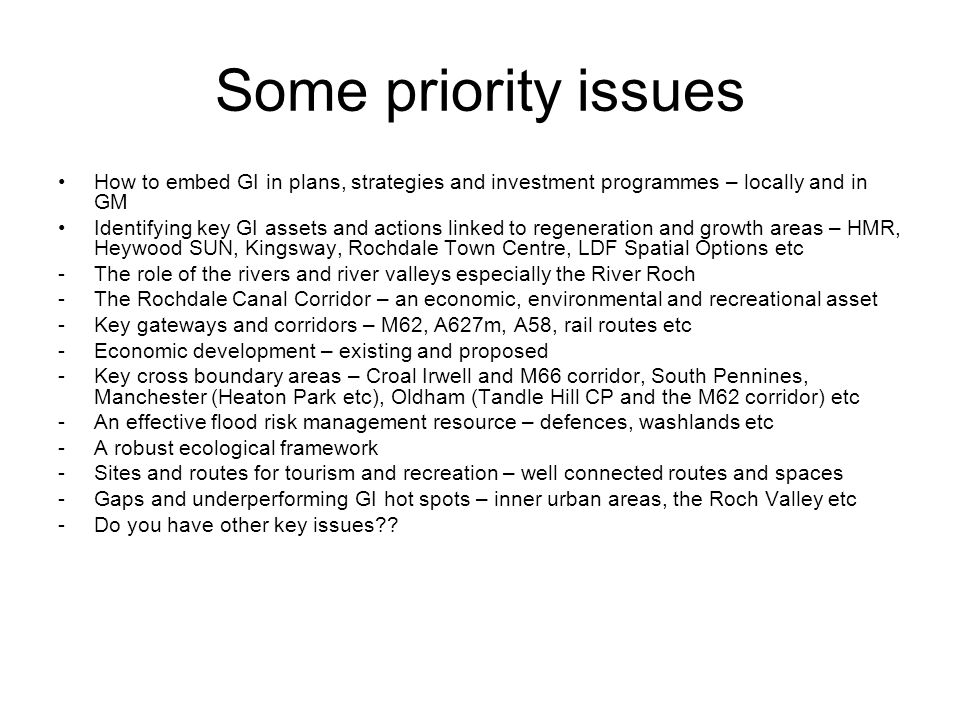 Some priority issues How to embed GI in plans, strategies and investment programmes – locally and in GM Identifying key GI assets and actions linked to regeneration and growth areas – HMR, Heywood SUN, Kingsway, Rochdale Town Centre, LDF Spatial Options etc -The role of the rivers and river valleys especially the River Roch -The Rochdale Canal Corridor – an economic, environmental and recreational asset -Key gateways and corridors – M62, A627m, A58, rail routes etc -Economic development – existing and proposed -Key cross boundary areas – Croal Irwell and M66 corridor, South Pennines, Manchester (Heaton Park etc), Oldham (Tandle Hill CP and the M62 corridor) etc -An effective flood risk management resource – defences, washlands etc -A robust ecological framework -Sites and routes for tourism and recreation – well connected routes and spaces -Gaps and underperforming GI hot spots – inner urban areas, the Roch Valley etc -Do you have other key issues