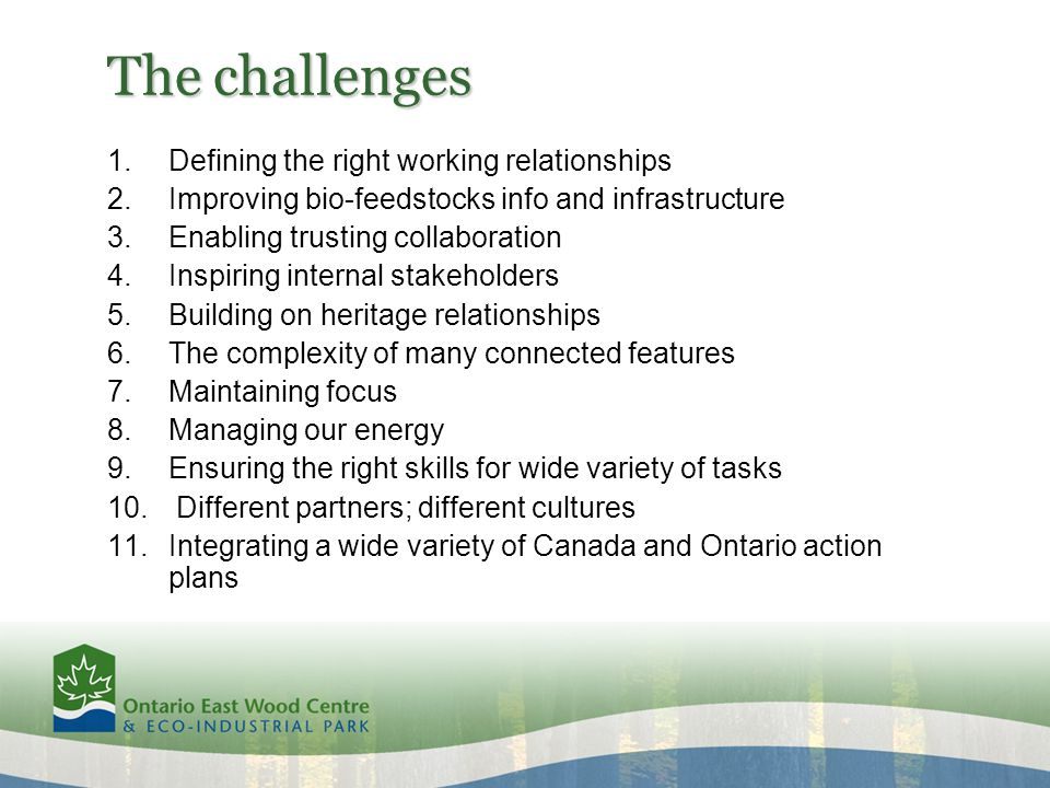 The challenges 1.Defining the right working relationships 2.Improving bio-feedstocks info and infrastructure 3.Enabling trusting collaboration 4.Inspiring internal stakeholders 5.Building on heritage relationships 6.The complexity of many connected features 7.Maintaining focus 8.Managing our energy 9.Ensuring the right skills for wide variety of tasks 10.