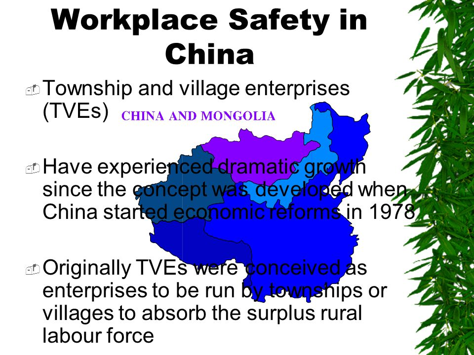  Township and village enterprises (TVEs)  Have experienced dramatic growth since the concept was developed when China started economic reforms in 1978  Originally TVEs were conceived as enterprises to be run by townships or villages to absorb the surplus rural labour force