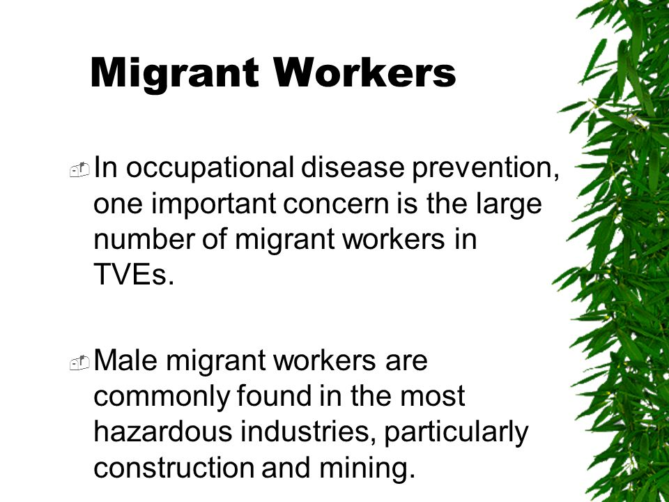 Migrant Workers  In occupational disease prevention, one important concern is the large number of migrant workers in TVEs.