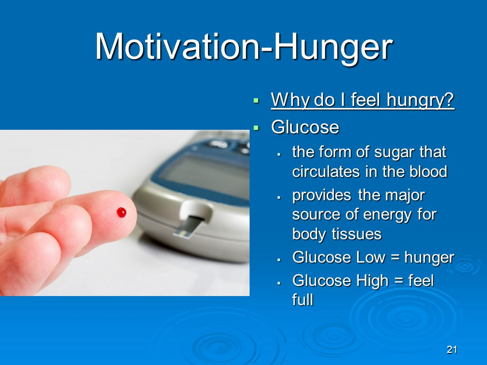 21 Motivation-Hunger  Why do I feel hungry?  Glucose  the form of sugar that circulates in the blood  provides the major source of energy for body