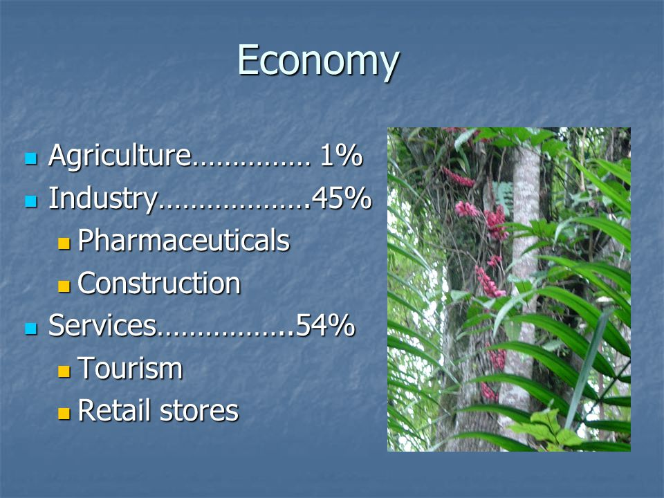 Economy Agriculture…………… 1% Agriculture…………… 1% Industry……………….45% Industry……………….45% Pharmaceuticals Pharmaceuticals Construction Construction Servic