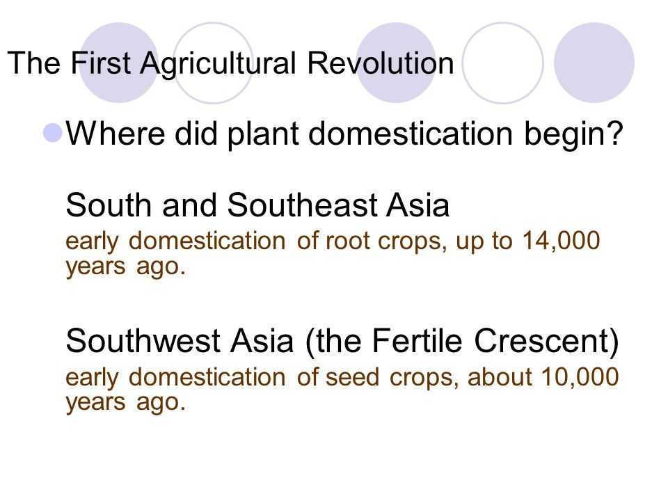 The First Agricultural Revolution Where did plant domestication begin? South and Southeast Asia early domestication of root crops, up to 14,000 years