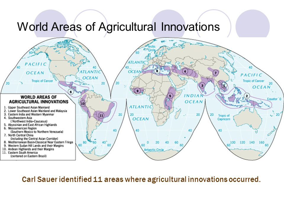 World Areas of Agricultural Innovations Carl Sauer identified 11 areas where agricultural innovations occurred.