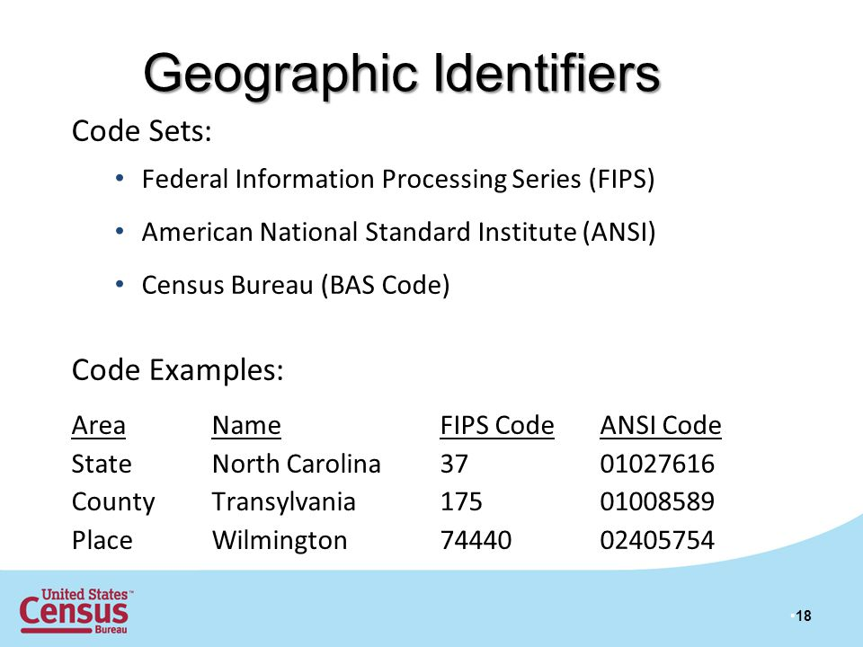 Geographic Identifiers 18 Code Sets: Federal Information Processing Series (FIPS) American National Standard Institute (ANSI) Census Bureau (BAS Code) Code Examples: AreaName FIPS Code ANSI Code StateNorth Carolina 37 01027616 CountyTransylvania 17501008589 PlaceWilmington 74440 02405754