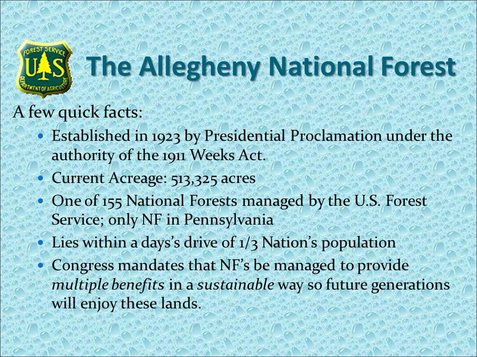 The Allegheny National Forest A few quick facts: Established in 1923 by Presidential Proclamation under the authority of the 1911 Weeks Act.