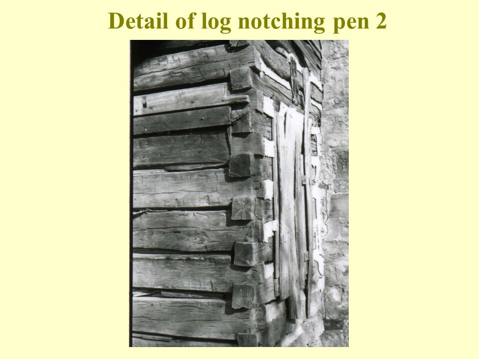 Detail of log notching pen 2