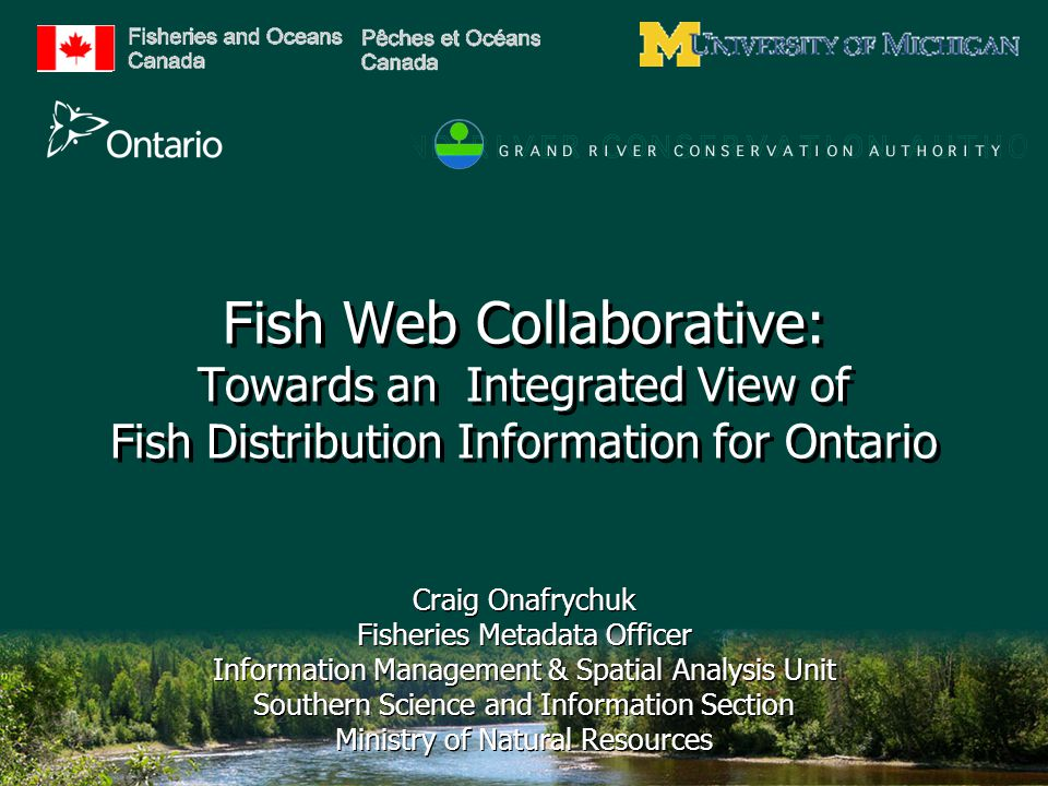 Fish Web Collaborative: Towards an Integrated View of Fish Distribution Information for Ontario Craig Onafrychuk Fisheries Metadata Officer Information Management & Spatial Analysis Unit Southern Science and Information Section Ministry of Natural Resources Craig Onafrychuk Fisheries Metadata Officer Information Management & Spatial Analysis Unit Southern Science and Information Section Ministry of Natural Resources