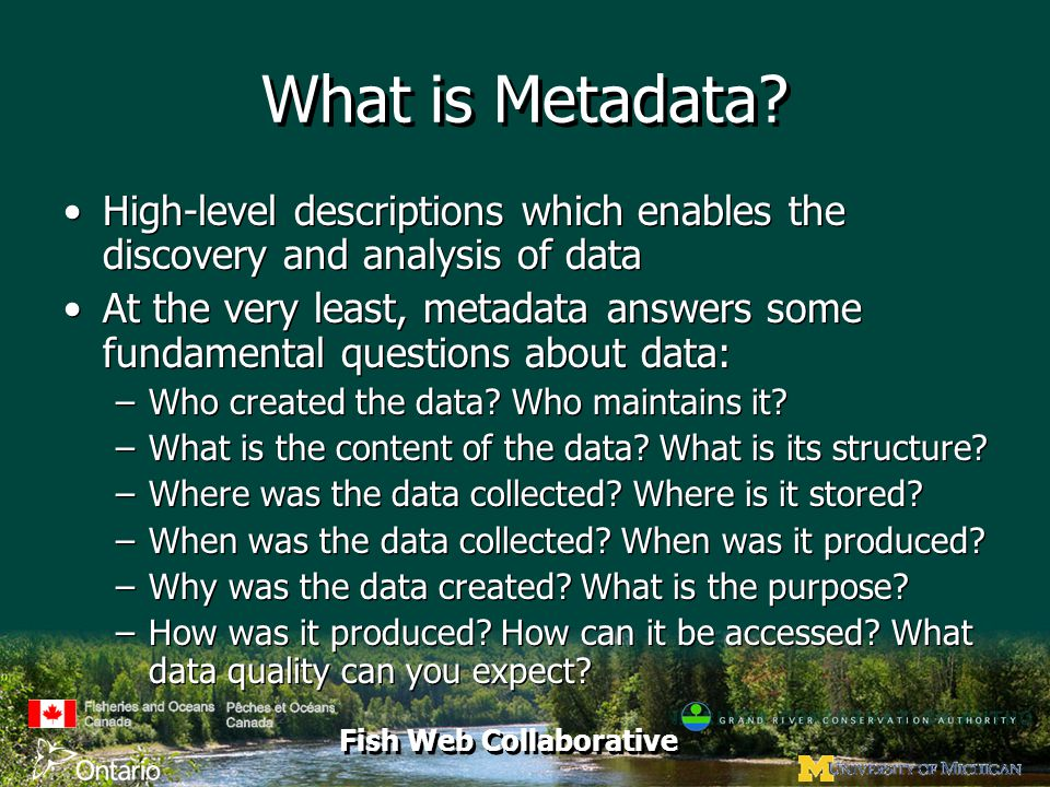 Fish Web Collaborative What is Metadata? High-level descriptions which enables the discovery and analysis of data At the very least, metadata answers