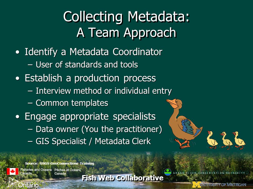 Fish Web Collaborative Collecting Metadata: A Team Approach Identify a Metadata Coordinator –User of standards and tools Establish a production process –Interview method or individual entry –Common templates Engage appropriate specialists –Data owner (You the practitioner) –GIS Specialist / Metadata Clerk Identify a Metadata Coordinator –User of standards and tools Establish a production process –Interview method or individual entry –Common templates Engage appropriate specialists –Data owner (You the practitioner) –GIS Specialist / Metadata Clerk Source: USGS GeoConnections Training