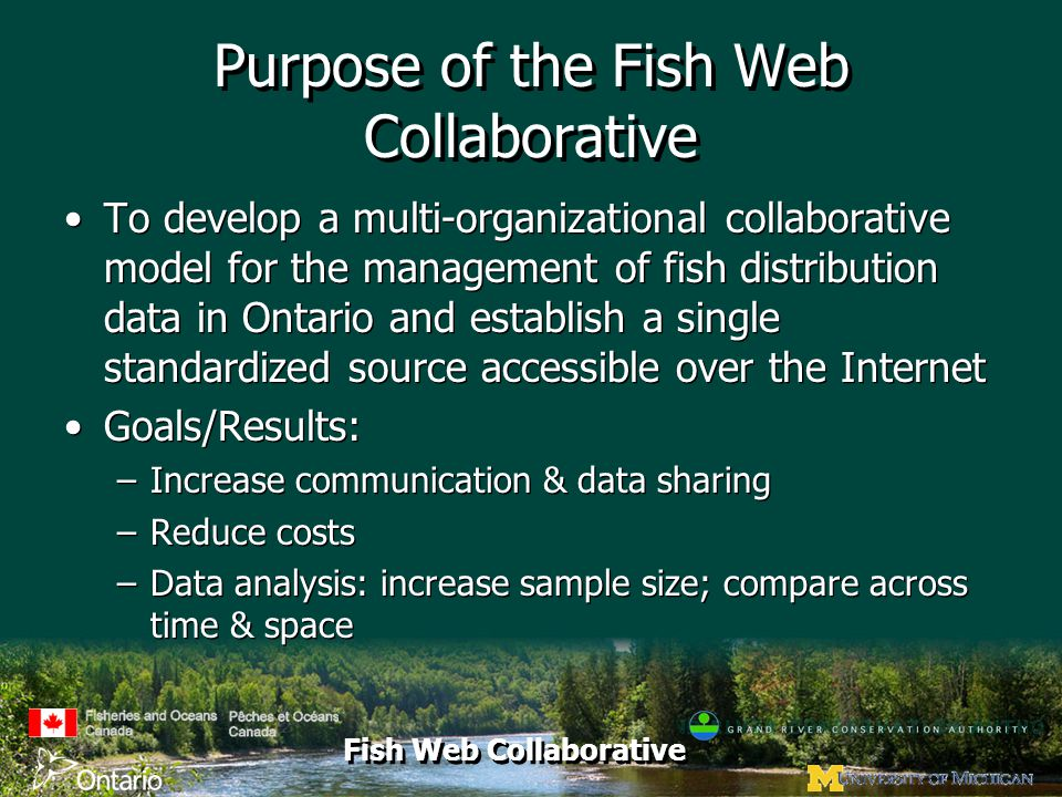 Fish Web Collaborative Purpose of the Fish Web Collaborative To develop a multi-organizational collaborative model for the management of fish distribution data in Ontario and establish a single standardized source accessible over the Internet Goals/Results: –Increase communication & data sharing –Reduce costs –Data analysis: increase sample size; compare across time & space To develop a multi-organizational collaborative model for the management of fish distribution data in Ontario and establish a single standardized source accessible over the Internet Goals/Results: –Increase communication & data sharing –Reduce costs –Data analysis: increase sample size; compare across time & space