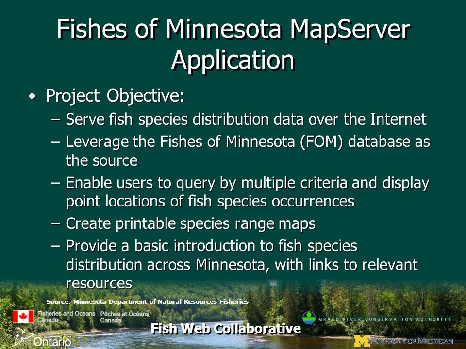 Fish Web Collaborative Fishes of Minnesota MapServer Application Project Objective: –Serve fish species distribution data over the Internet –Leverage