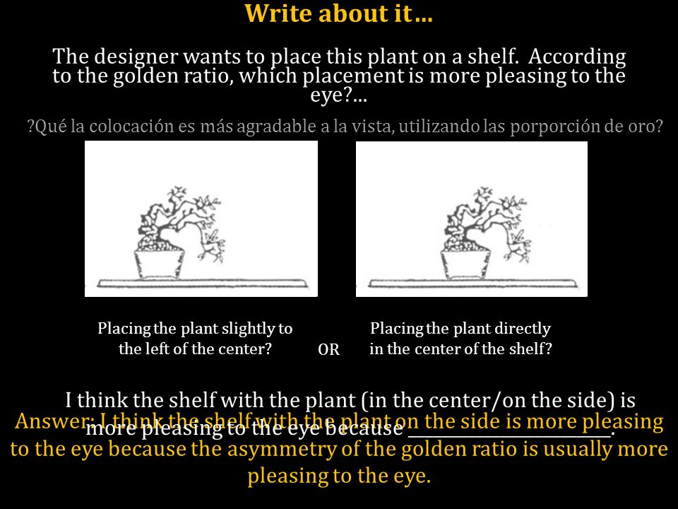 Write about it… The designer wants to place this plant on a shelf. According to the golden ratio, which placement is more pleasing to the eye?... Plac