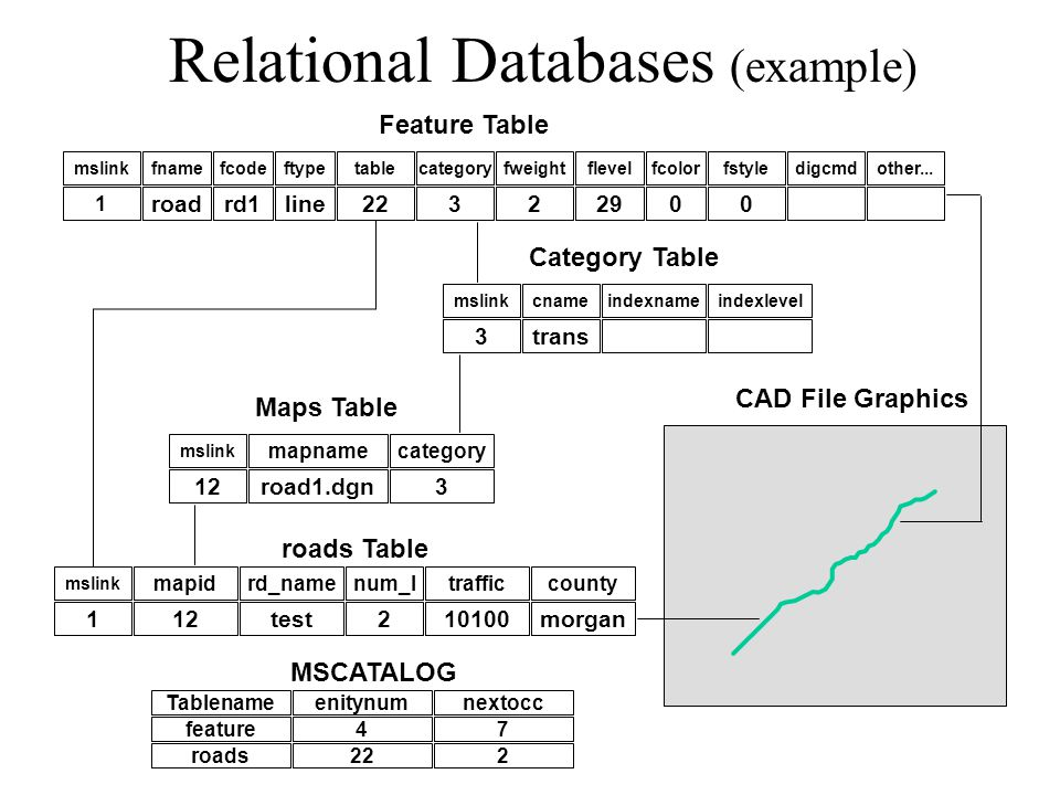 Relational Databases (example) mslinkfnamefcodeftypecategoryfweightflevelfcolorfstyletabledigcmdother...