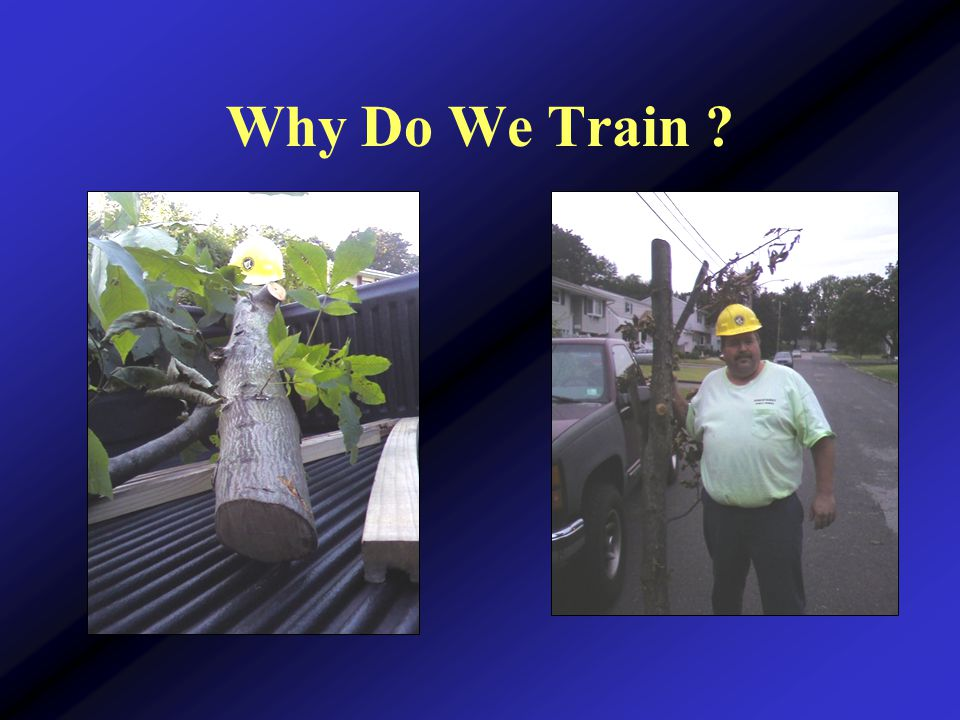 Why Do We Train