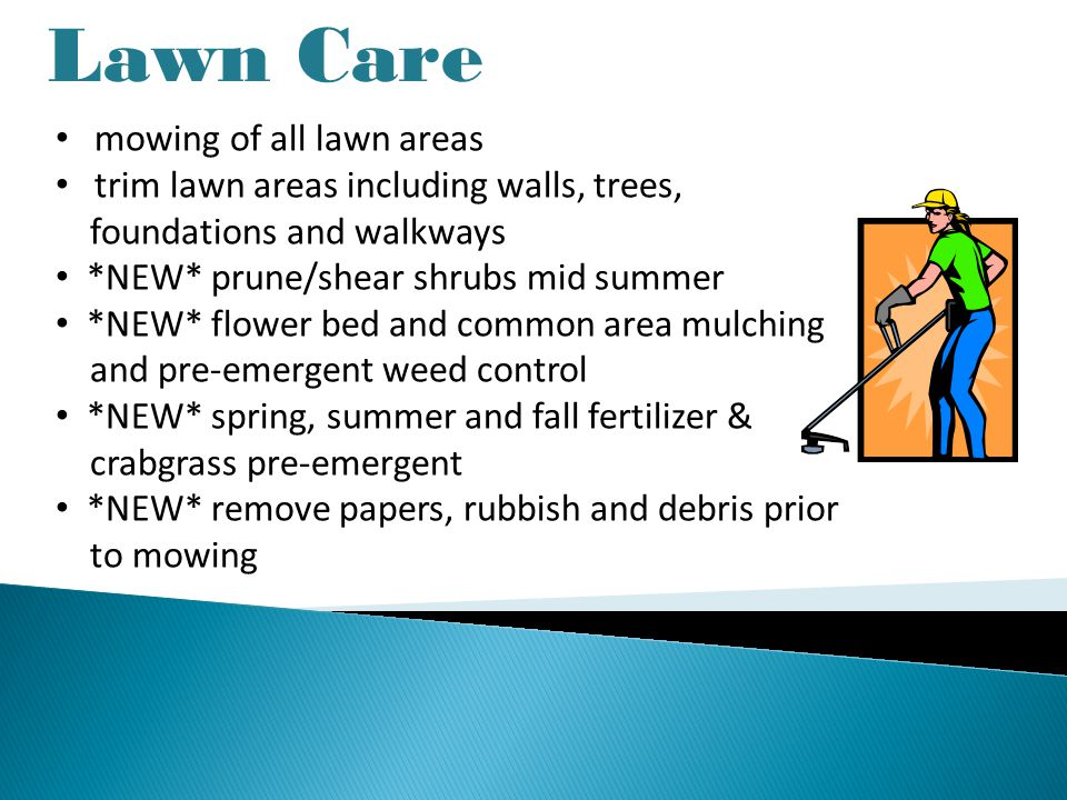 Lawn Care mowing of all lawn areas trim lawn areas including walls, trees, foundations and walkways *NEW* prune/shear shrubs mid summer *NEW* flower bed and common area mulching and pre-emergent weed control *NEW* spring, summer and fall fertilizer & crabgrass pre-emergent *NEW* remove papers, rubbish and debris prior to mowing