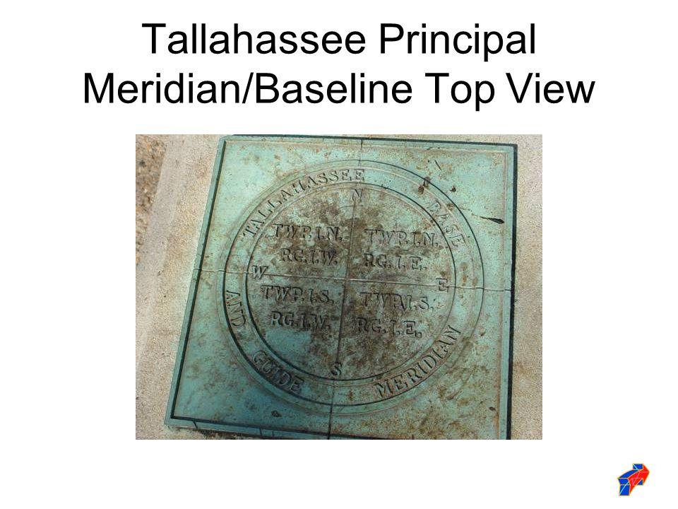 Tallahassee Principal Meridian/Baseline Top View