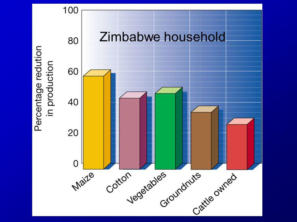 Zimbabwe household