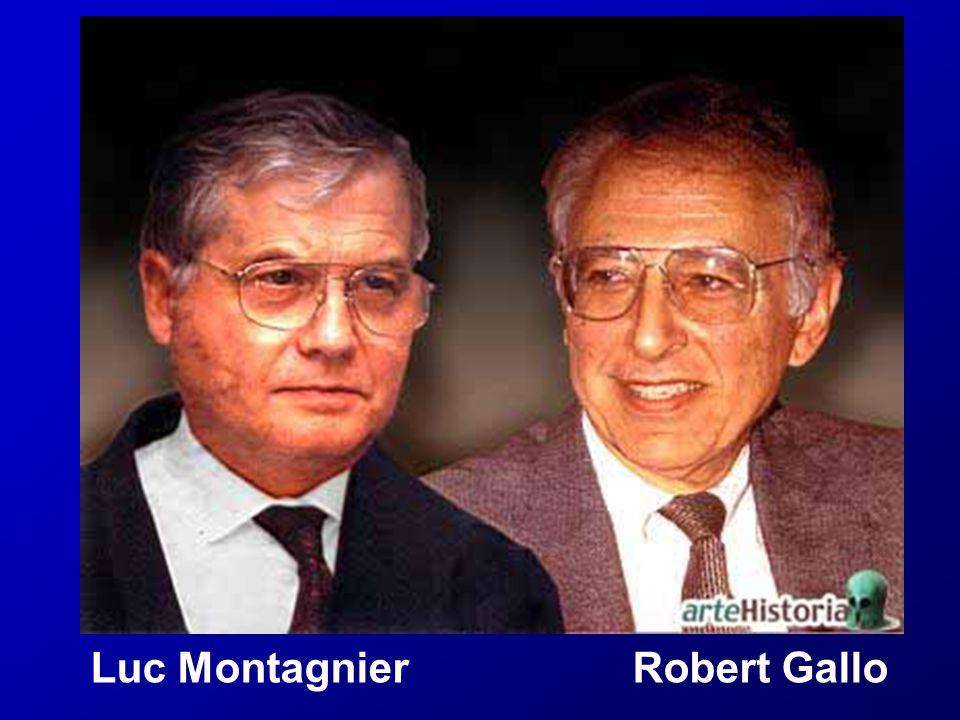 Luc Montagnier Robert Gallo