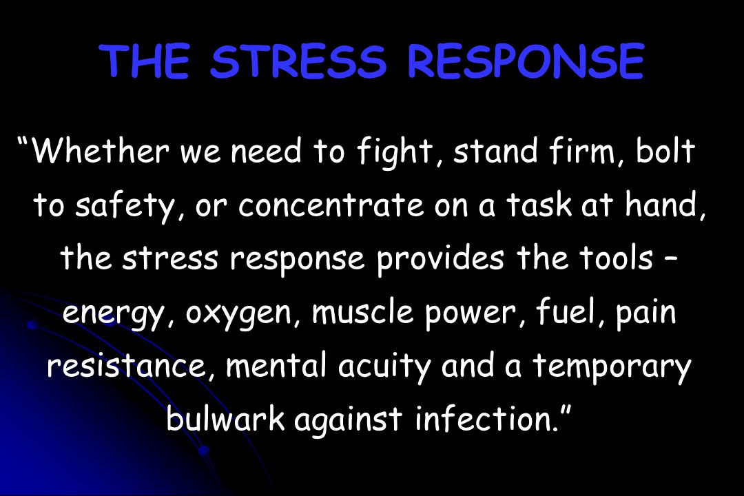"THE STRESS RESPONSE ""Whether we need to fight, stand firm, bolt to safety, or concentrate on a task at hand, the stress response provides the tools –"